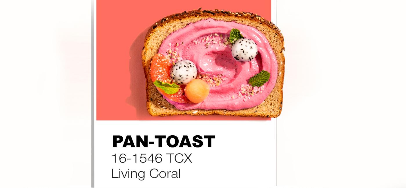 Pan-toast Recipe Image
