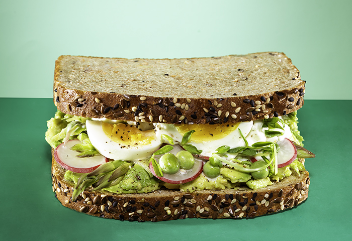 Earth Day Sammich Recipe Image